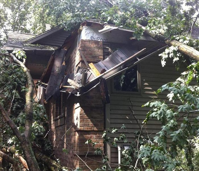 Houston Storm Damage with High Winds Leads to Tree Falling Through Roof