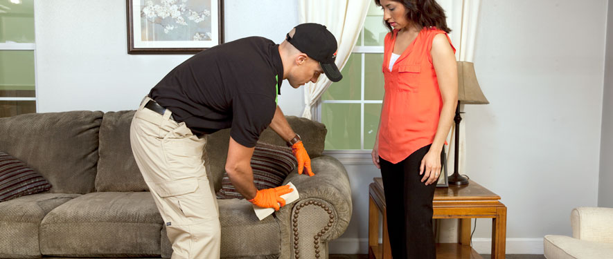 Kingwood, TX carpet upholstery cleaning