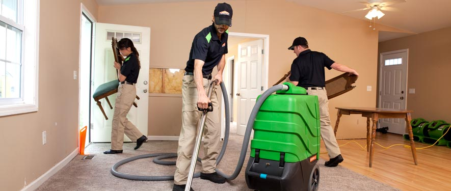 Kingwood, TX cleaning services