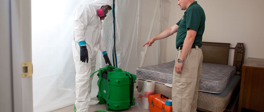 Kingwood, TX mold removal process
